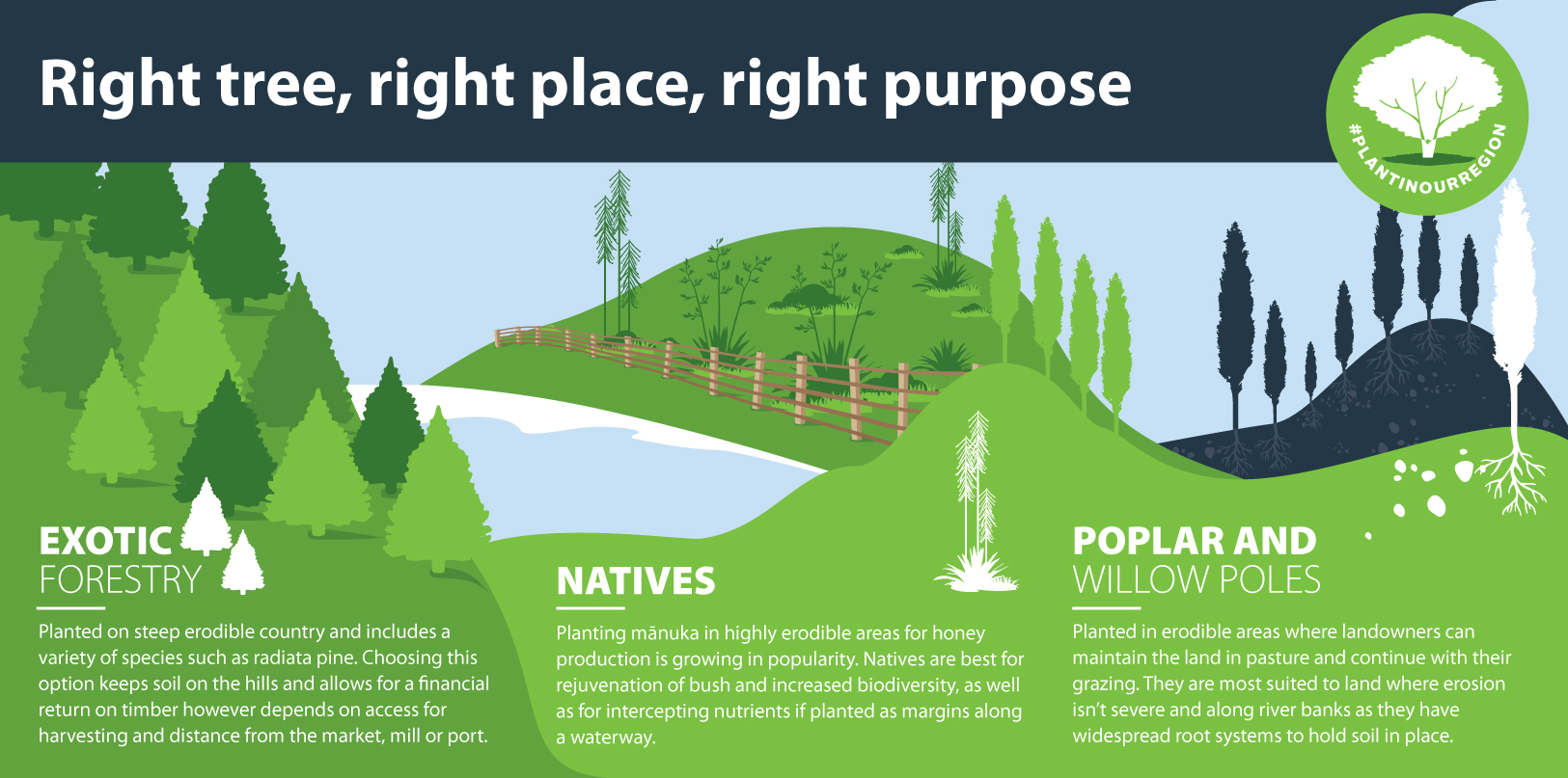 #PlantInOurRegion - Right tree, right place, right purpose