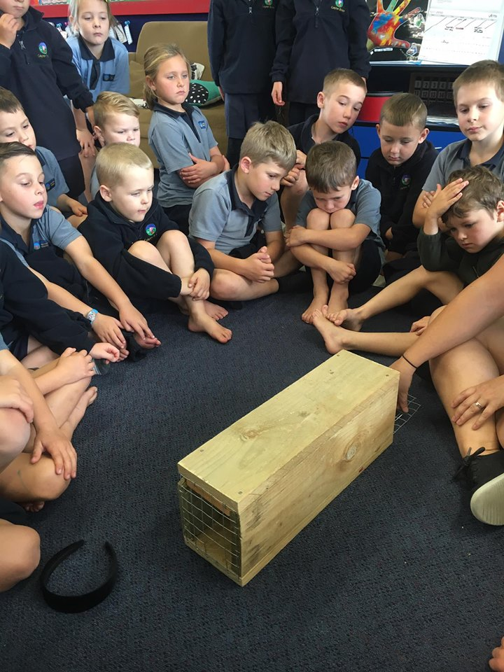 School students learning about pest animal trapping.