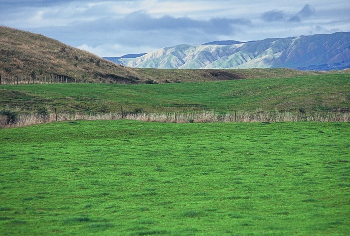 One Plan intensive farming rules continued to be reviewed